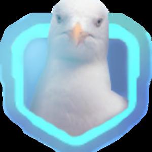 A_Seagull Net Worth
