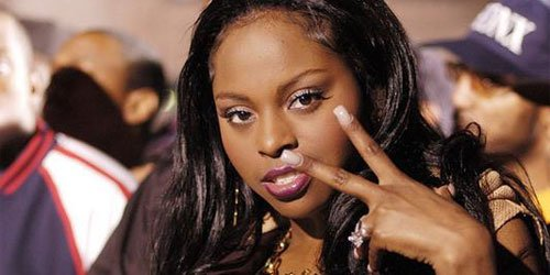 Earnings Disclaimer >> Foxy Brown Net Worth | NetWorth Database